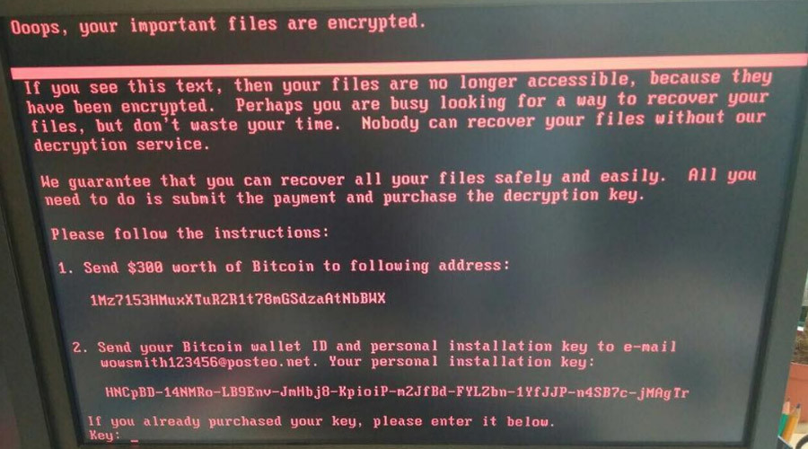 petya ransomware screenshot